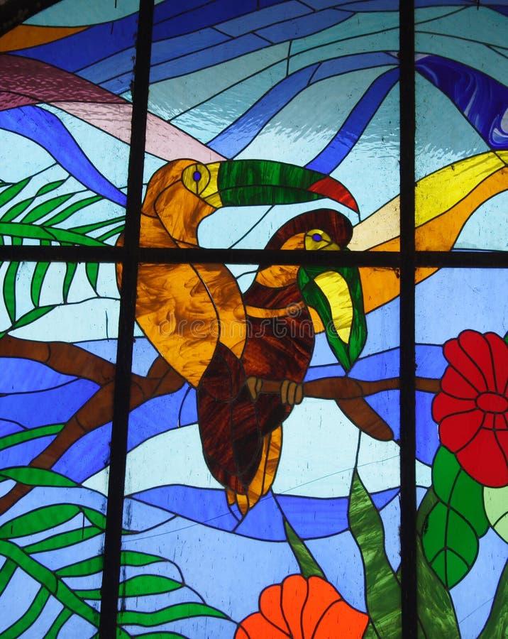 玻璃被弄脏的热带视窗 库存图片