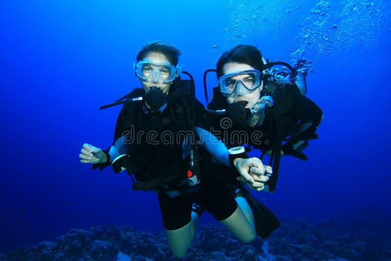 珊瑚夫妇潜水礁石 免版税库存图片