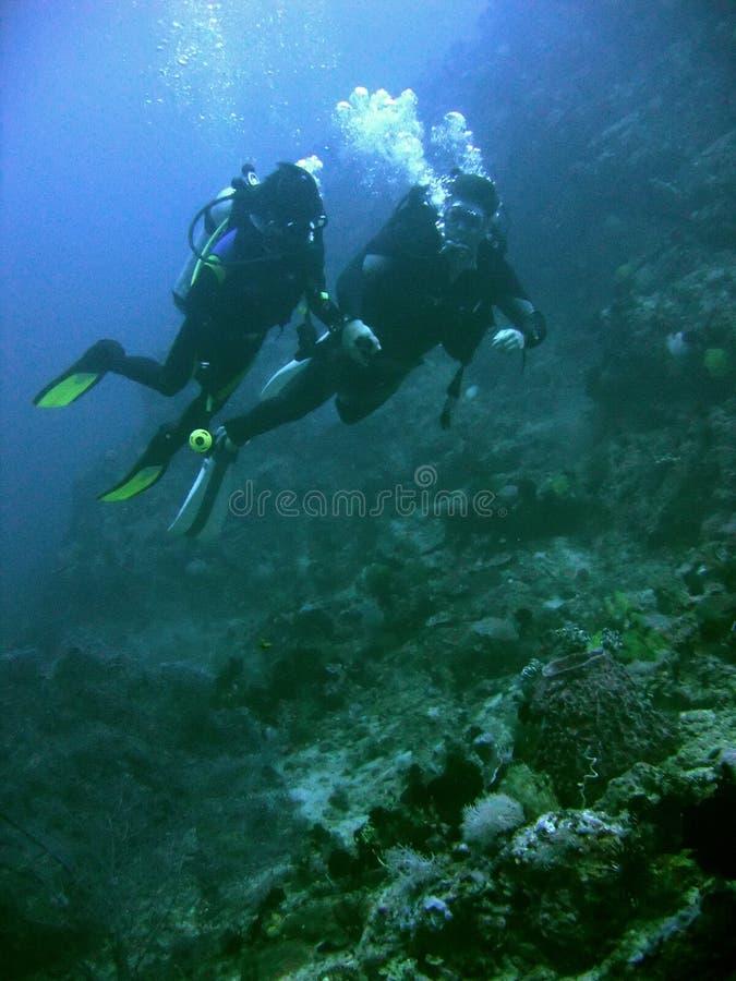珊瑚夫妇潜水菲律宾礁石水肺 免版税库存图片