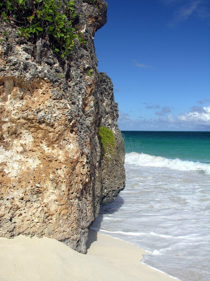 珊瑚岩石 免版税库存图片