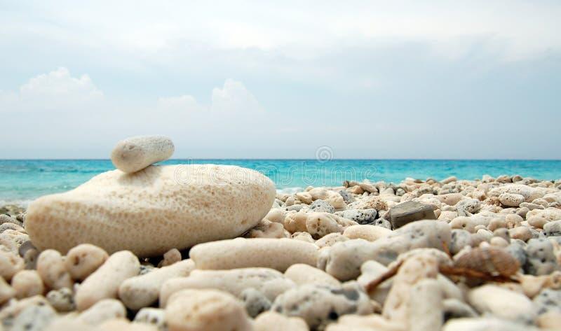 珊瑚海滩海岸库拉索岛海岛 免版税库存照片