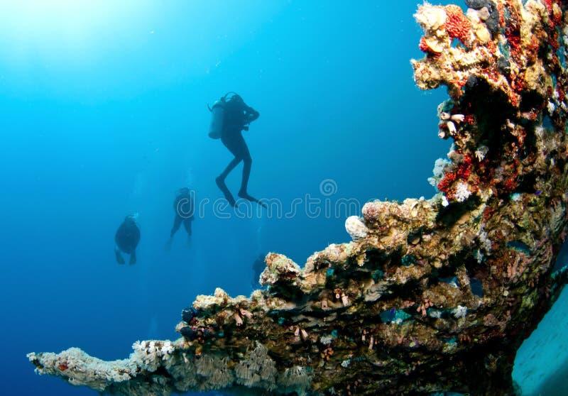 珊瑚潜水员礁石水肺 免版税库存照片