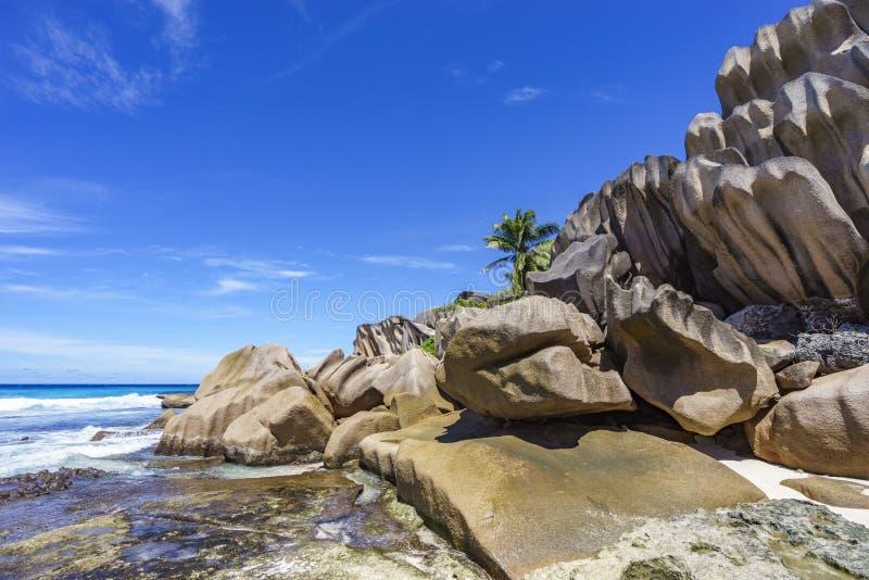 珊瑚礁和大花岗岩岩石与棕榈在gran海滩  库存图片