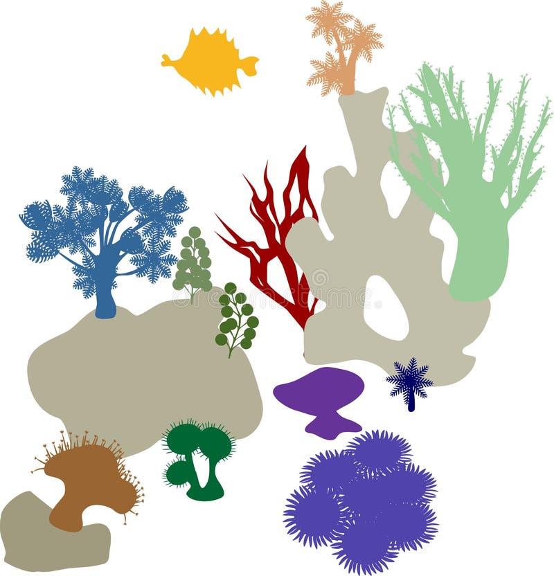 珊瑚礁 五颜六色的剪影 皇族释放例证