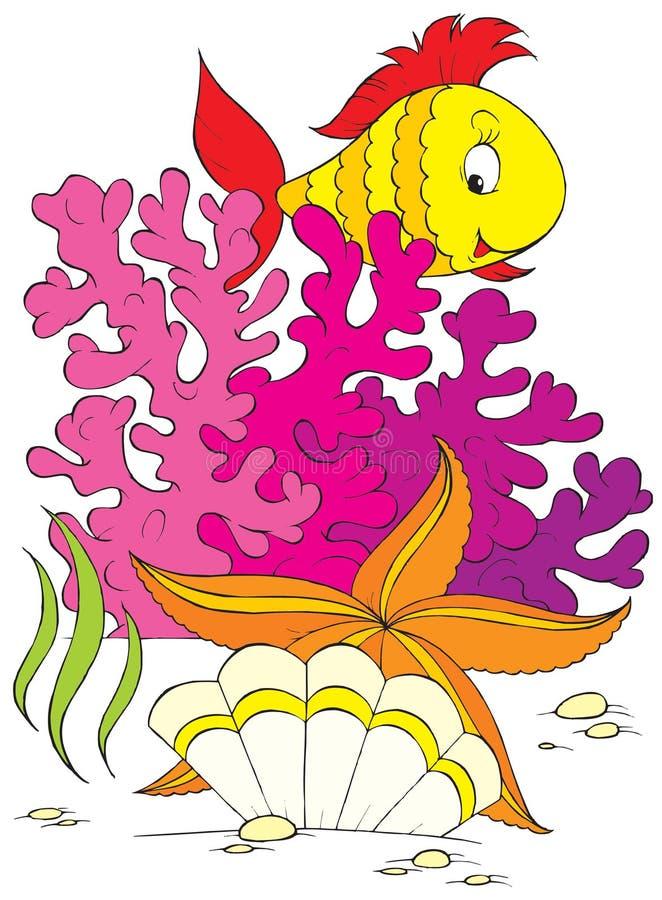珊瑚礁 皇族释放例证