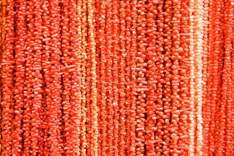 珊瑚红色 免版税库存图片
