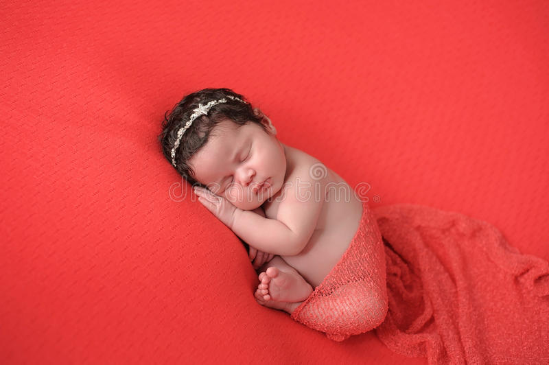 珊瑚色的背景的新出生的女婴 免版税图库摄影