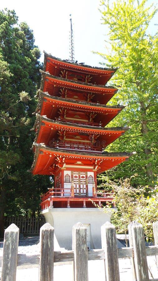 珍宝日本茶园的塔塔 免版税库存图片