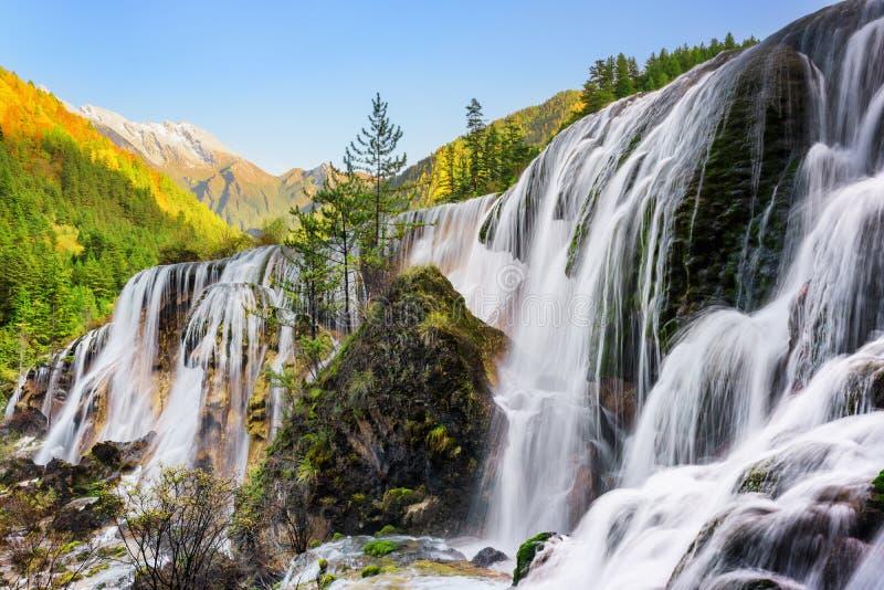 珍珠浅滩瀑布和森林的惊人的看法在日落的 免版税库存照片