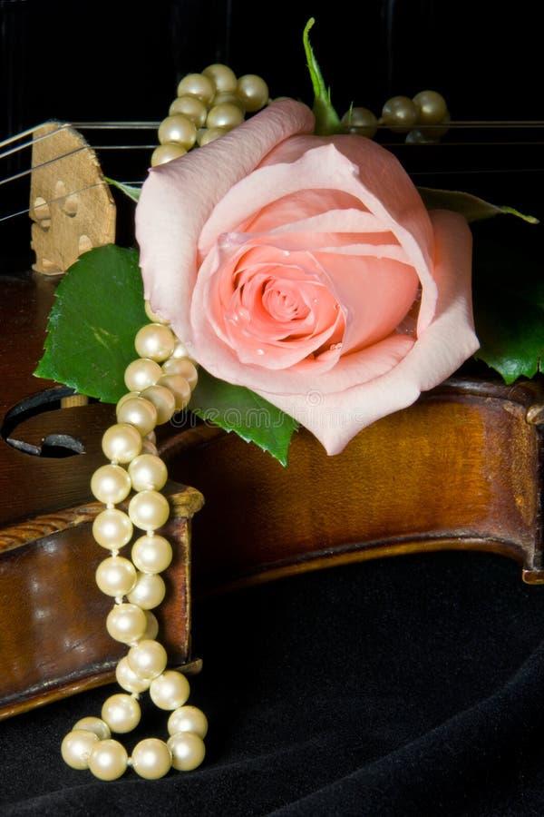 珍珠玫瑰色小提琴 图库摄影