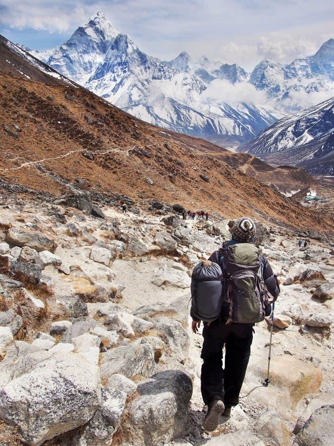 珠穆琅玛营地艰苦跋涉的远足者,尼泊尔喜马拉雅山 免版税库存图片