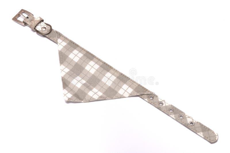 班丹纳花绸宠物的衣领围巾 免版税图库摄影
