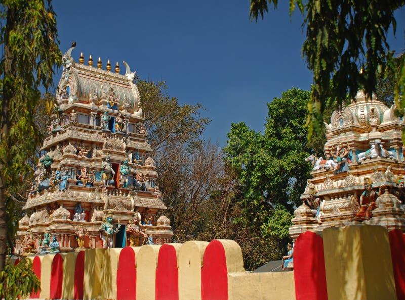 班格洛公牛印度寺庙 库存图片