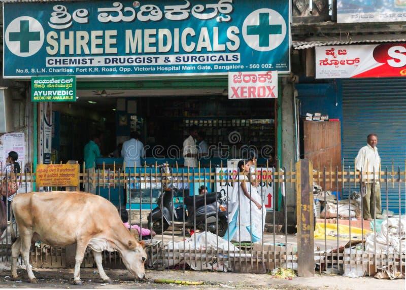 班格洛,印度-大约2013年10月:药房在老镇。 图库摄影