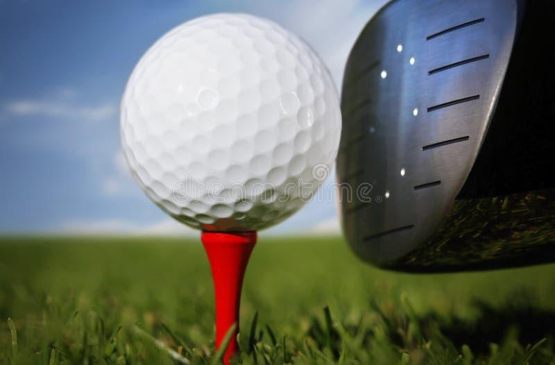 球俱乐部高尔夫球草 库存图片