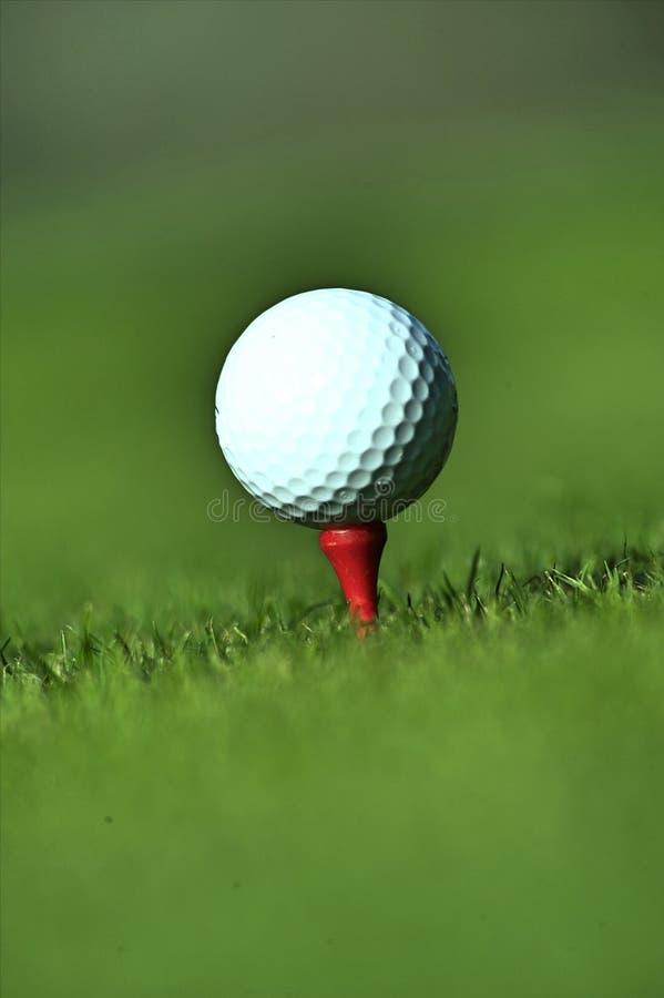 球剪报高尔夫球图象查出的路径发球区域 图库摄影