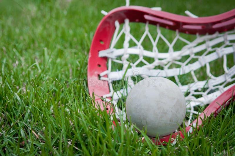 球女孩放牧灰色顶头曲棍网兜球 图库摄影
