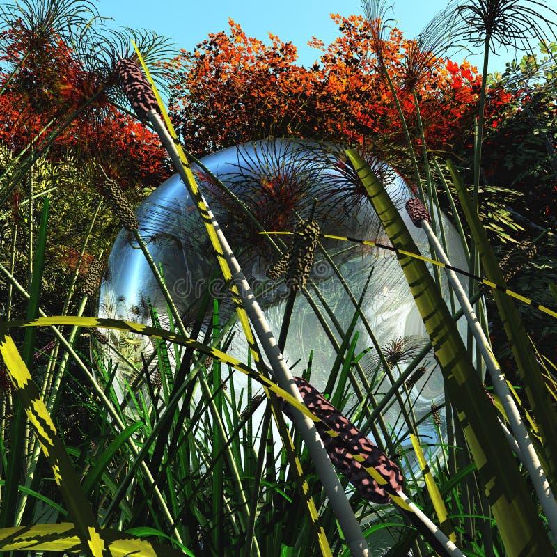 水球形在草的 免版税库存照片