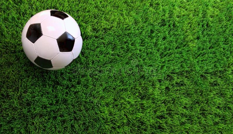 球草绿色足球 免版税库存照片