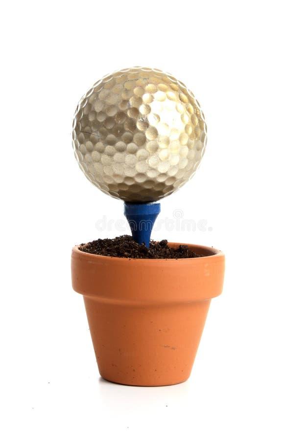 球高尔夫球小的发球区域 免版税库存照片