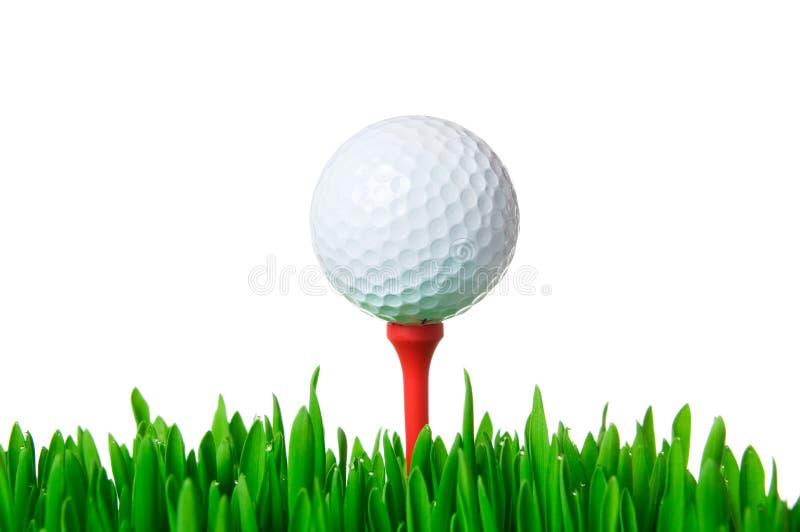 球高尔夫球查出的发球区域 库存照片
