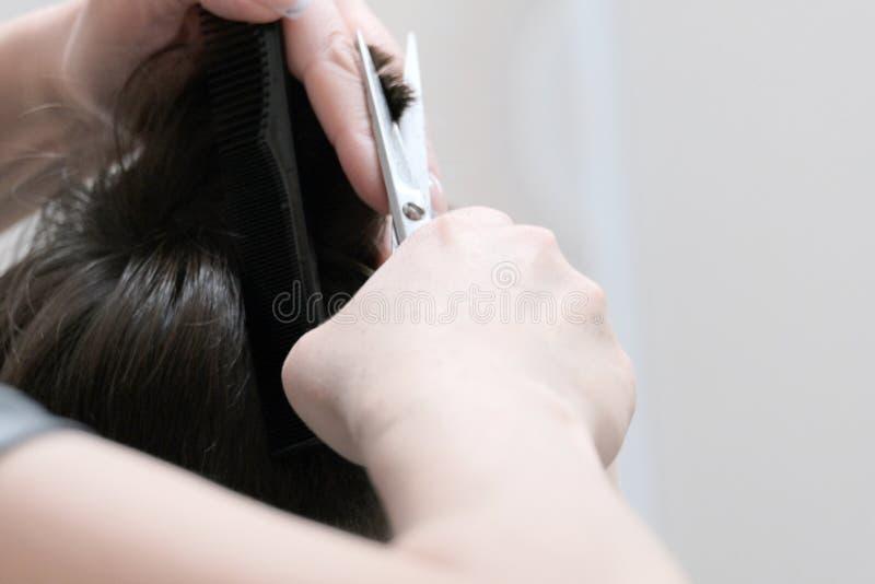 理发特写镜头在美发师的 有剪刀的女性手切除了头发的末端在人` s头的 免版税库存照片
