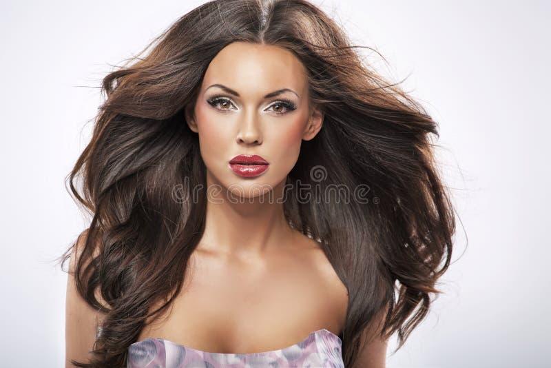 理想的女性秀丽的纵向 库存图片