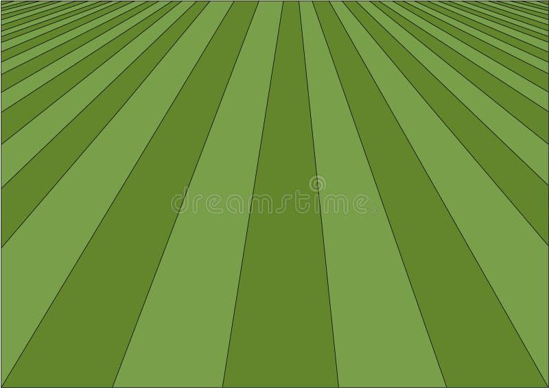 理想的草坪 库存例证
