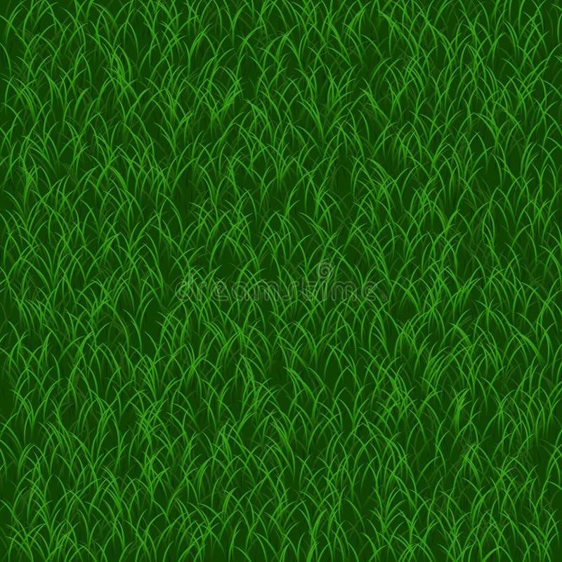 理想背景的草坪 绿草 美好的新纹理 皇族释放例证