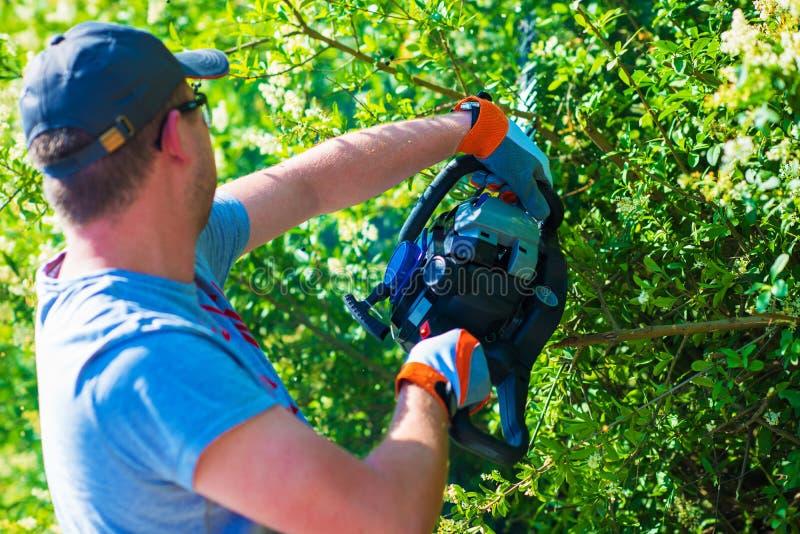 整理树篱的人 免版税库存照片