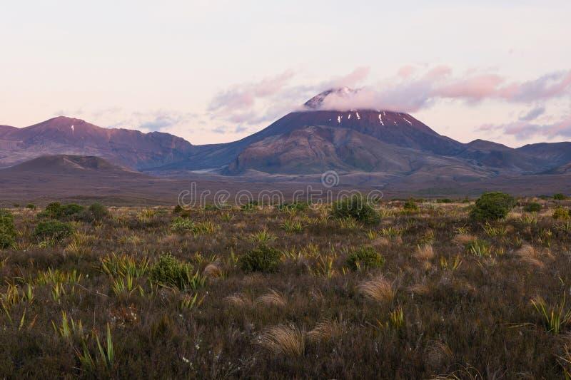 瑙鲁霍伊火山火山,新西兰 图库摄影