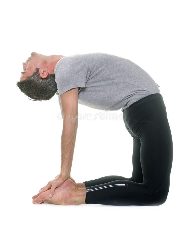 瑜伽人在演播室 免版税库存图片