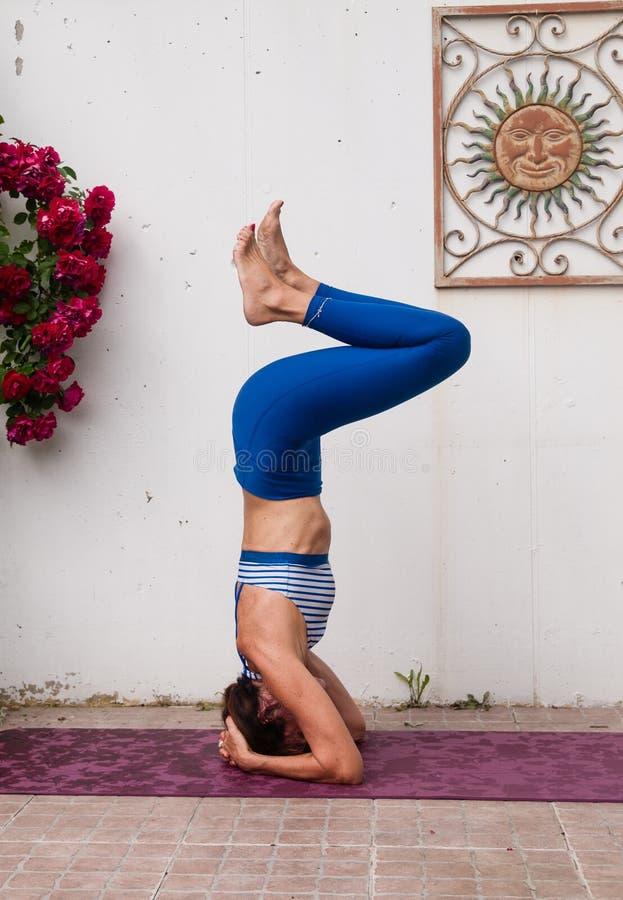 瑜伽在庭院里 免版税库存图片