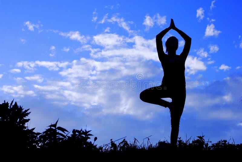 瑜伽妇女实践的姿势,剪影 库存照片