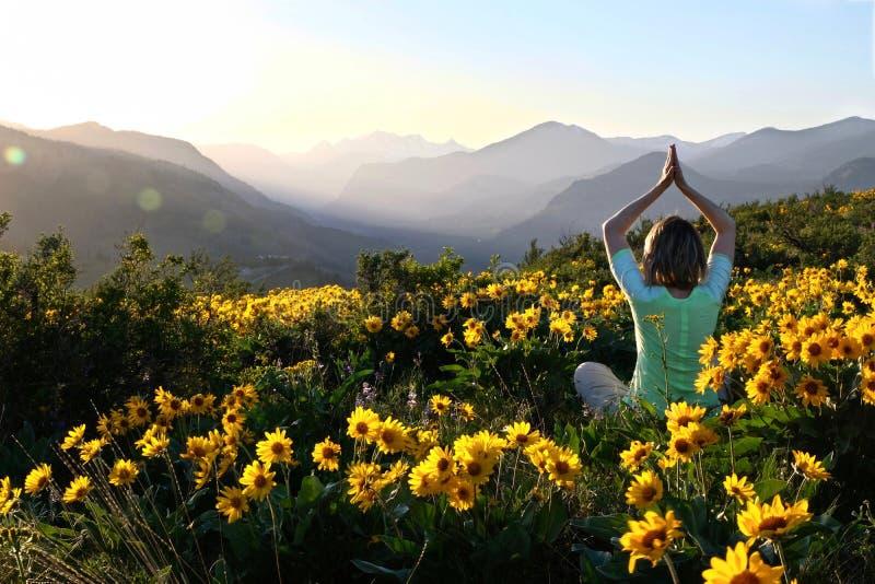 瑜伽姿势的妇女在向日葵中在草甸 库存照片