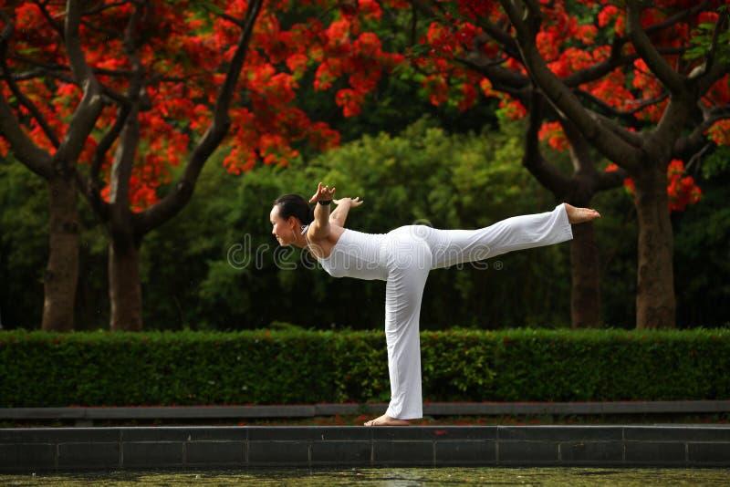 瑜伽平衡 库存照片