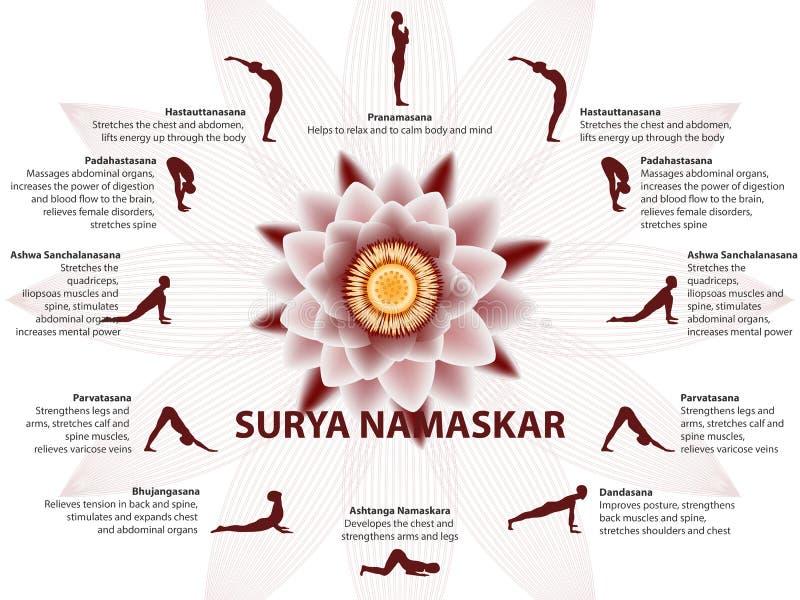 瑜伽infographics,苏里亚Namaskar序列 库存例证