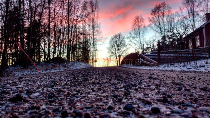 瑞典冬天日落 免版税库存照片