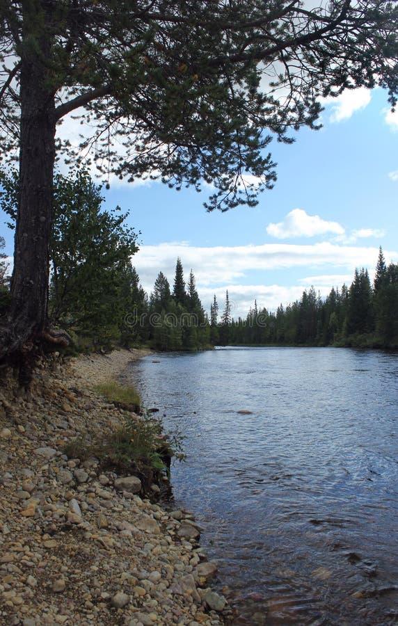 瑞典河 免版税库存照片