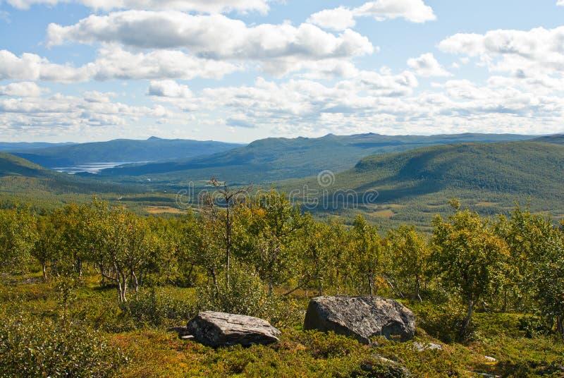 Download 瑞典语的小山 库存图片. 图片 包括有 结构树, 线路, 圈子, 木材, 森林, 小山, 岩石, 极性, 瑞典 - 22353103