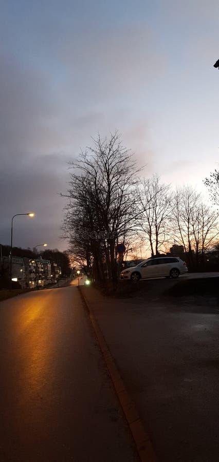瑞典路边的美丽树木与天空 库存照片