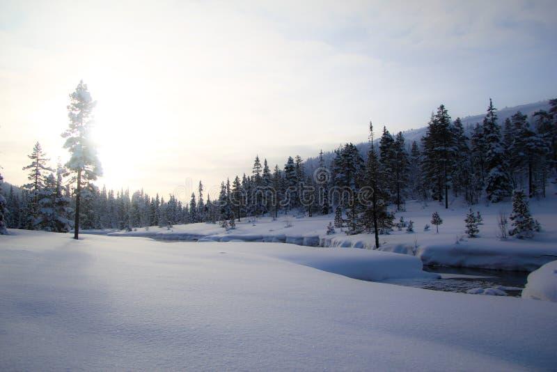 瑞典winterland 免版税库存图片