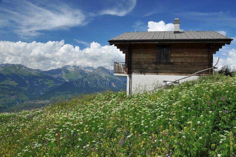 瑞士山中的牧人小屋瑞士查阅 免版税图库摄影