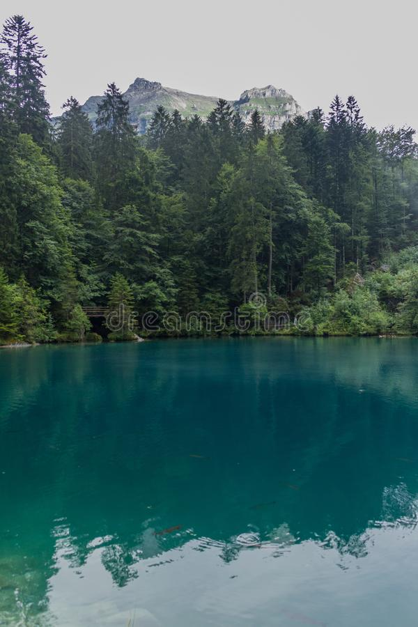 瑞士山间的美丽探险之旅  — 布劳塞/瑞士 图库摄影
