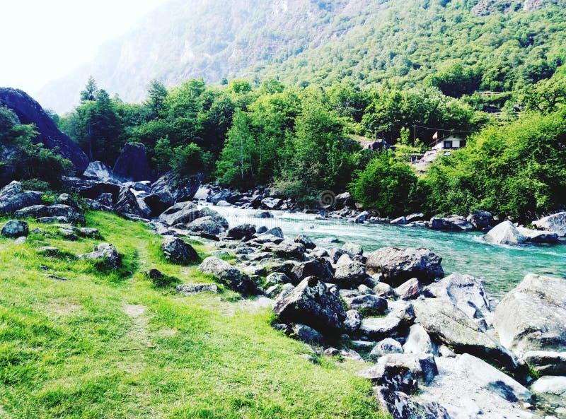 瑞士河 库存照片