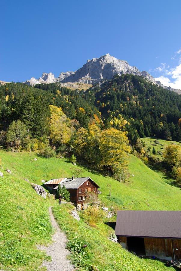 瑞士瑞士山中的牧人小屋在阿尔卑斯 免版税库存照片