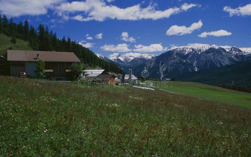 瑞士阿尔卑斯:` LÃ ¼ ` MÃ ¼ nster谷的小山村 免版税库存图片