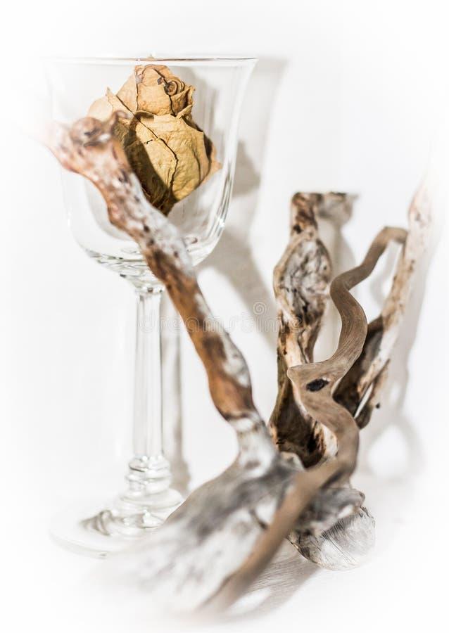 玻璃和木头 免版税图库摄影