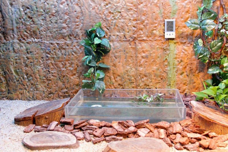 玻璃容器 免版税图库摄影