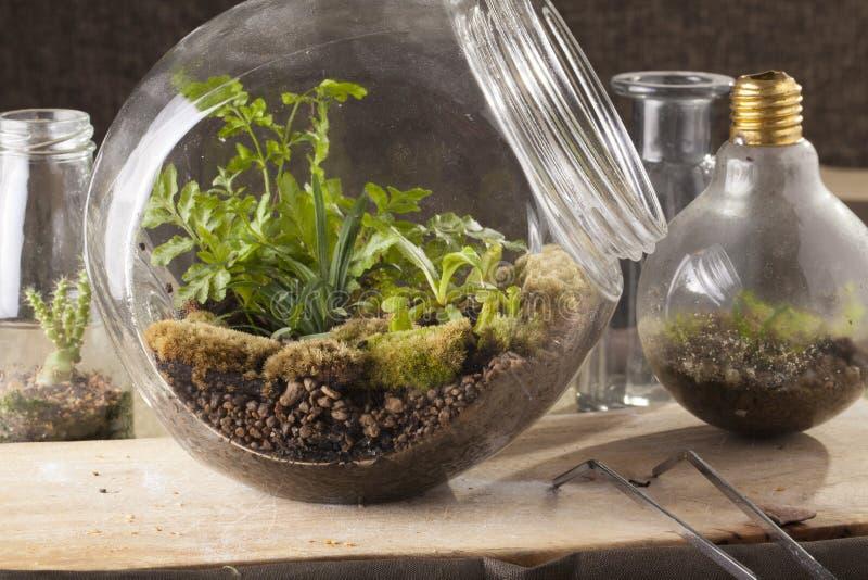 玻璃容器 免版税库存图片